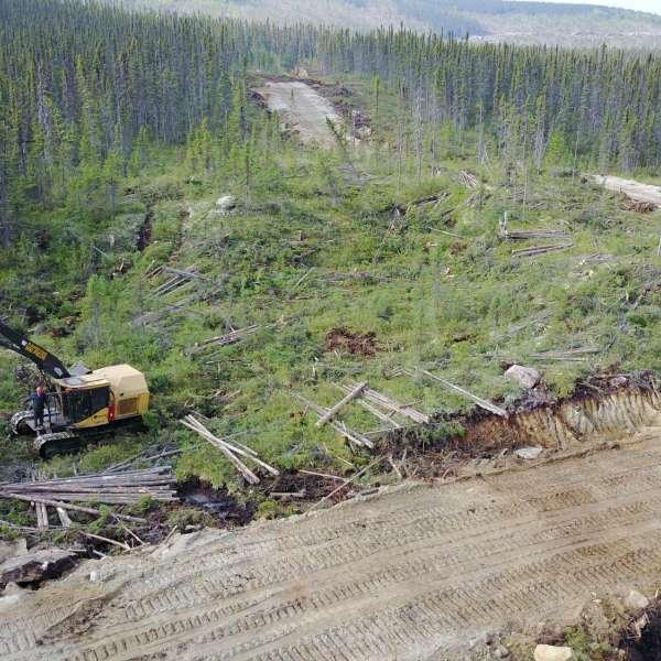Opérations forestières